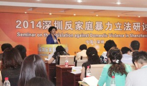 Shenzhen domestic violence conference